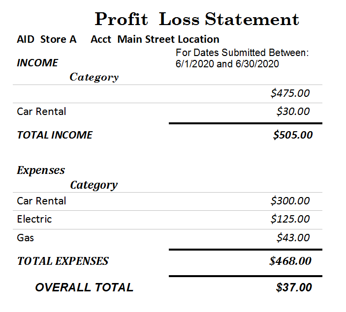 profit and loss statement software